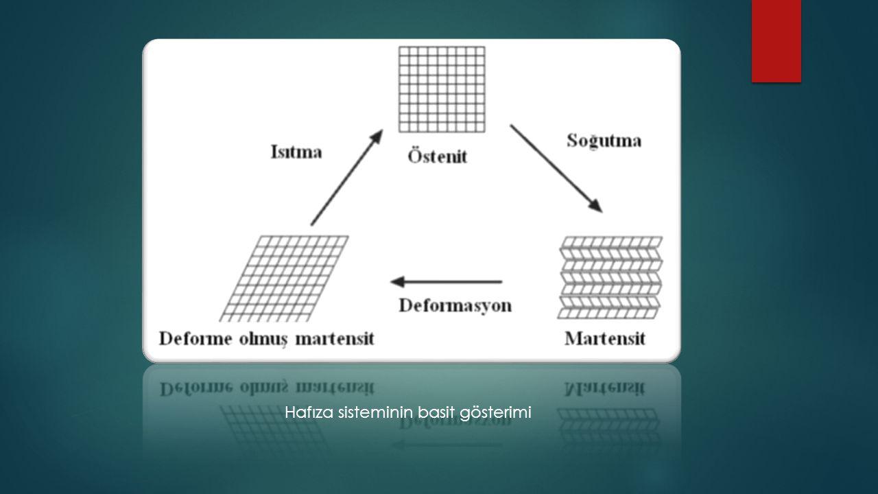 Hafıza sisteminin basit gösterimi