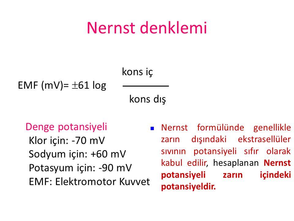 Membran potansiyeli Nernst potansiyeli: Membranın iki tarafı arasındaki potansiyel farkı bir iyonun membrandan net difüzyonunu önleyecek düzeydeyse o