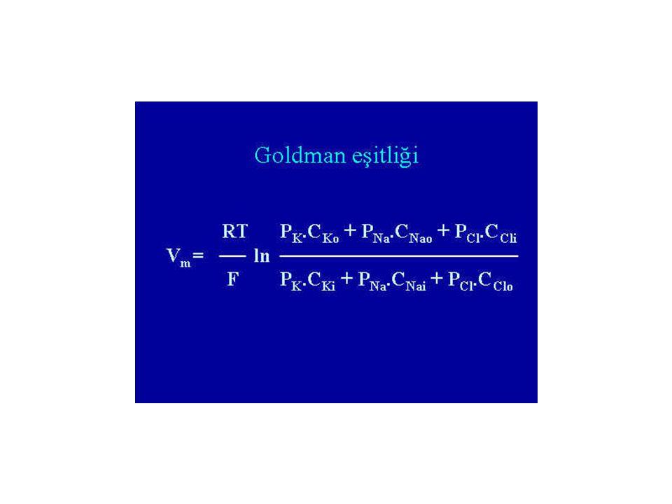 Goldman-Hodgkin-Katz Denklemi Membran birden fazla iyona geçirgen ise denge potansiyeli 3 faktöre bağlıdır: 1.Her bir iyonun elektriksel yükünün çeşid