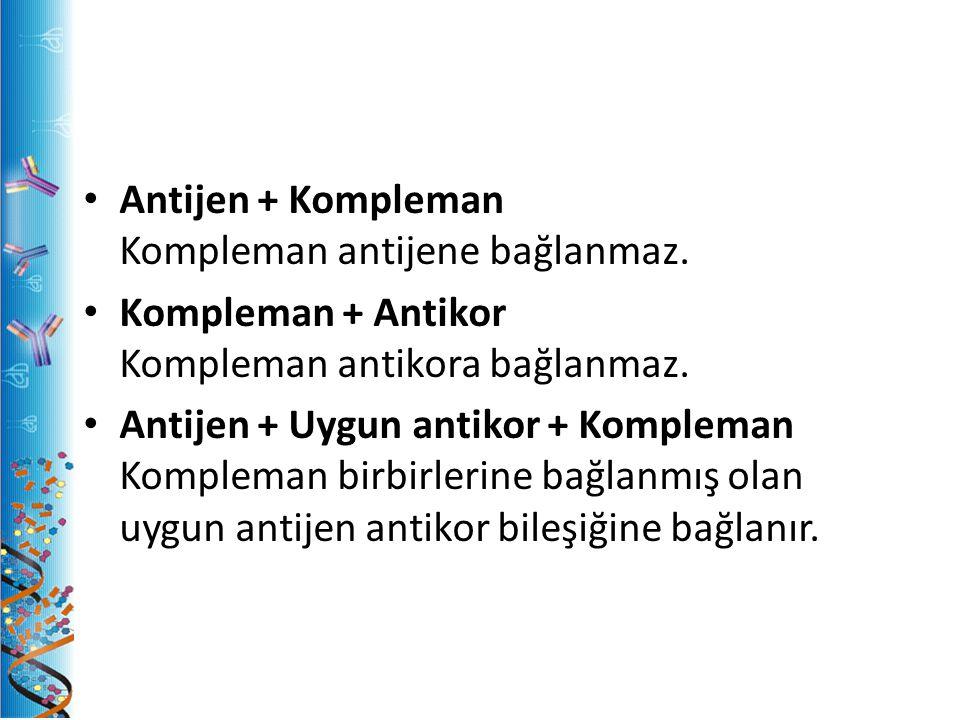 Antijen + Kompleman Kompleman antijene bağlanmaz. Kompleman + Antikor Kompleman antikora bağlanmaz. Antijen + Uygun antikor + Kompleman Kompleman birb