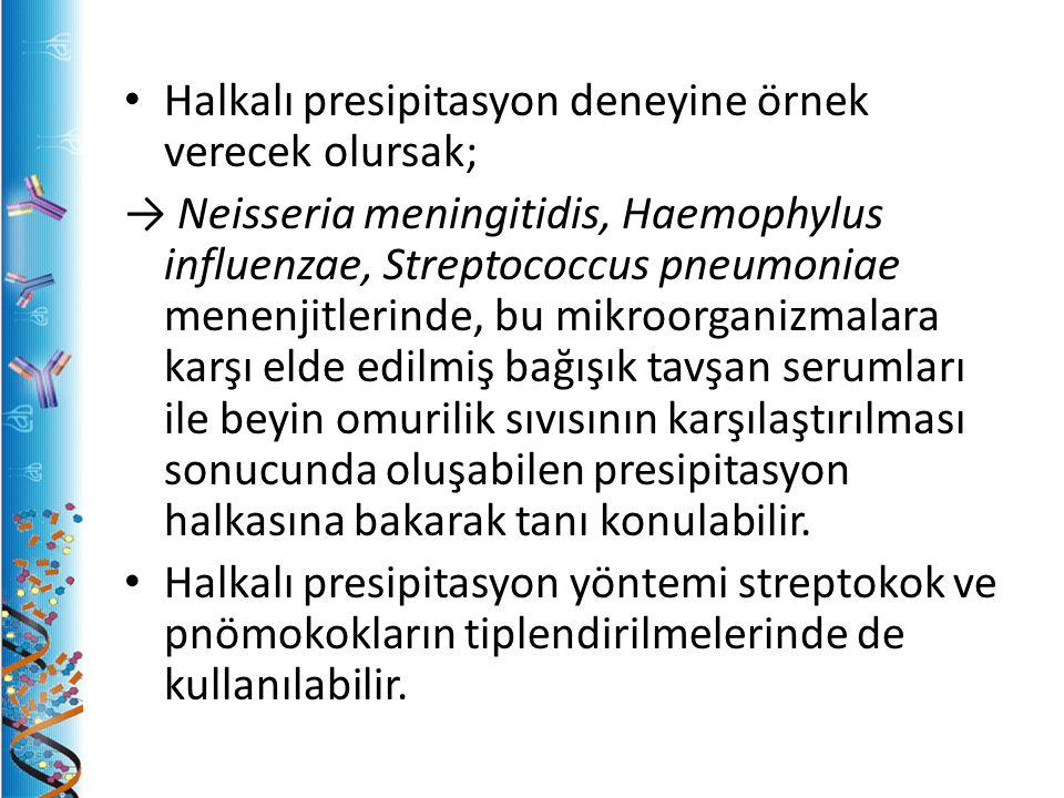 Halkalı presipitasyon deneyine örnek verecek olursak; → Neisseria meningitidis, Haemophylus influenzae, Streptococcus pneumoniae menenjitlerinde, bu mikroorganizmalara karşı elde edilmiş bağışık tavşan serumları ile beyin omurilik sıvısının karşılaştırılması sonucunda oluşabilen presipitasyon halkasına bakarak tanı konulabilir.