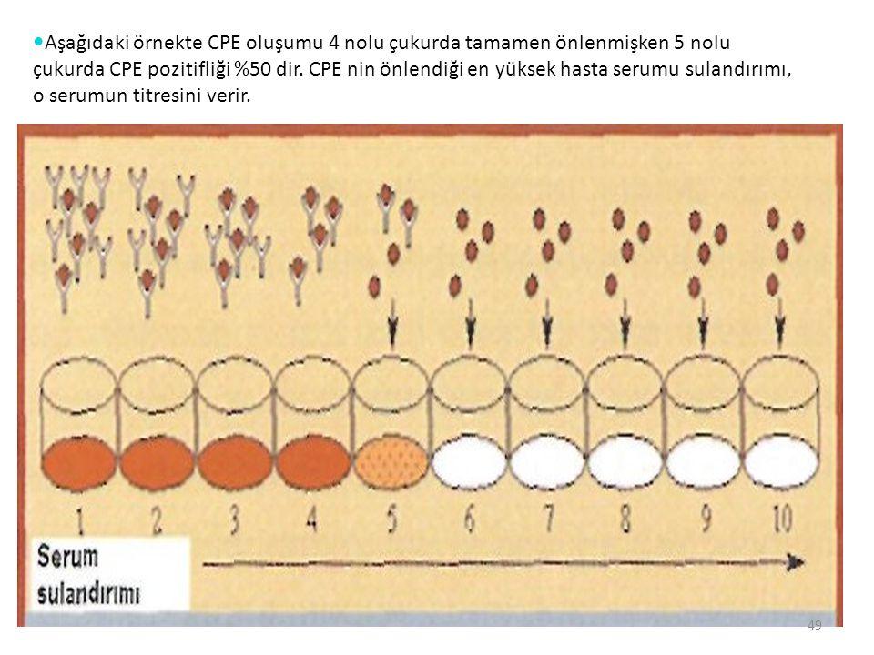 49 Aşağıdaki örnekte CPE oluşumu 4 nolu çukurda tamamen önlenmişken 5 nolu çukurda CPE pozitifliği %50 dir. CPE nin önlendiği en yüksek hasta serumu s
