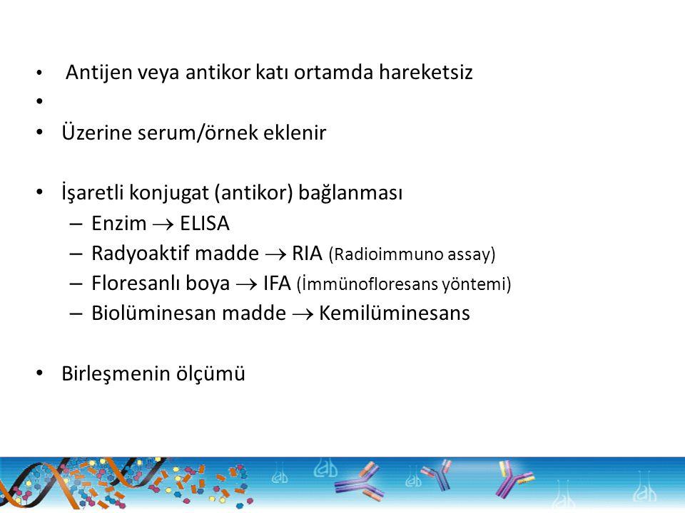 Antijen veya antikor katı ortamda hareketsiz Üzerine serum/örnek eklenir İşaretli konjugat (antikor) bağlanması – Enzim  ELISA – Radyoaktif madde  RIA (Radioimmuno assay) – Floresanlı boya  IFA (İmmünofloresans yöntemi) – Biolüminesan madde  Kemilüminesans Birleşmenin ölçümü