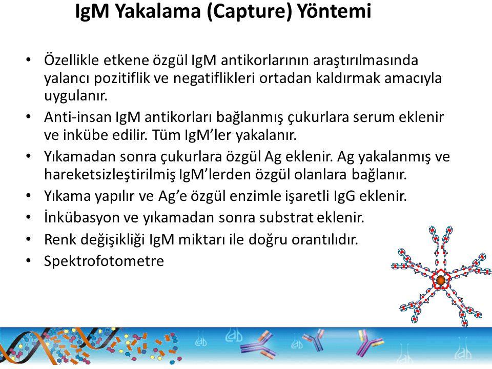 IgM Yakalama (Capture) Yöntemi Özellikle etkene özgül IgM antikorlarının araştırılmasında yalancı pozitiflik ve negatiflikleri ortadan kaldırmak amacıyla uygulanır.