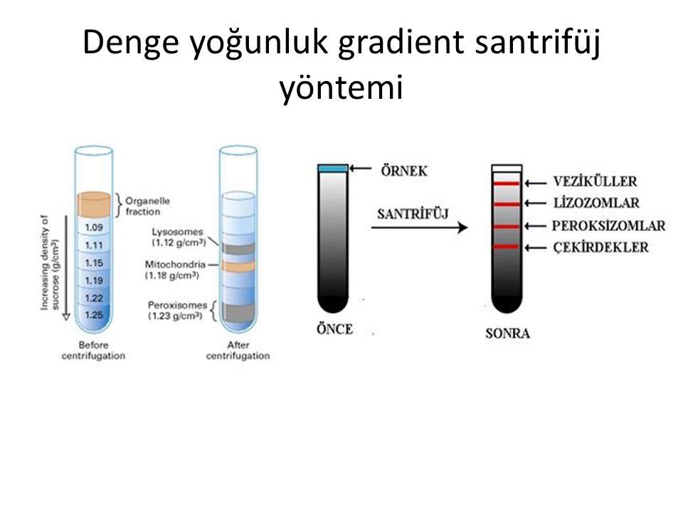 Uygulama Şekline Göre İnce Tabaka Kromatografisi Kolon Kromatografisi Sabit faz, saflaştırılmak istenen maddenin cinsine göre değişir.