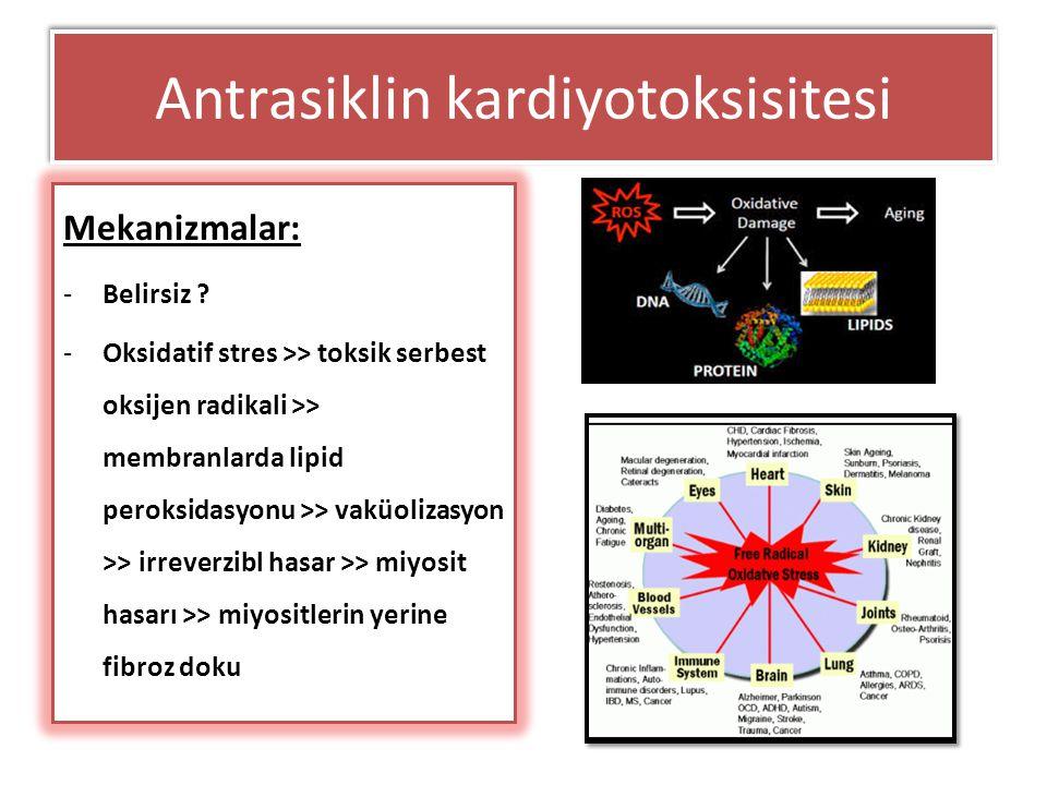 Antrasiklin kardiyotoksisitesi Mekanizmalar: -Belirsiz ? -Oksidatif stres >> toksik serbest oksijen radikali >> membranlarda lipid peroksidasyonu >> v