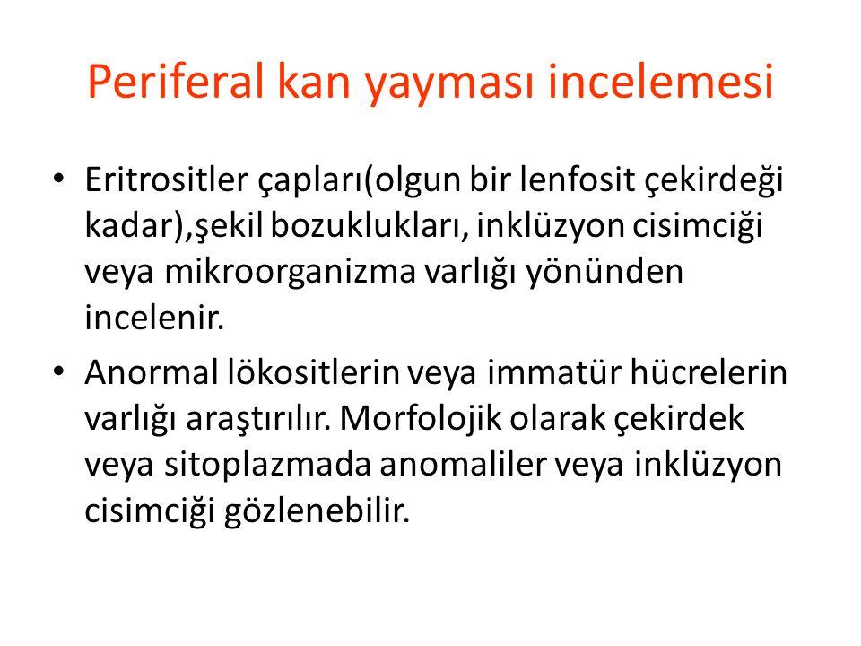 Periferal kan yayması incelemesi Eritrositler çapları(olgun bir lenfosit çekirdeği kadar),şekil bozuklukları, inklüzyon cisimciği veya mikroorganizma