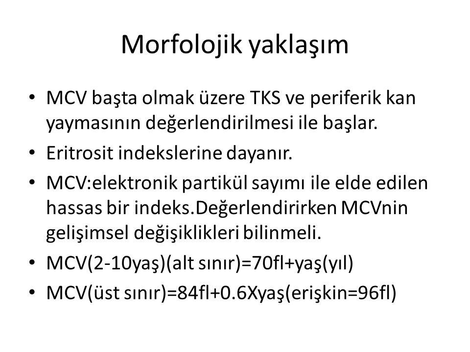 Morfolojik yaklaşım MCV başta olmak üzere TKS ve periferik kan yaymasının değerlendirilmesi ile başlar. Eritrosit indekslerine dayanır. MCV:elektronik