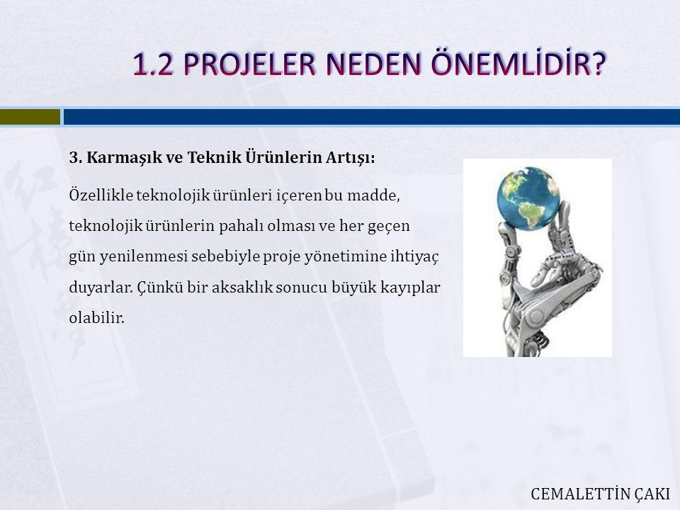 3. Karmaşık ve Teknik Ürünlerin Artışı: Özellikle teknolojik ürünleri içeren bu madde, teknolojik ürünlerin pahalı olması ve her geçen gün yenilenmesi