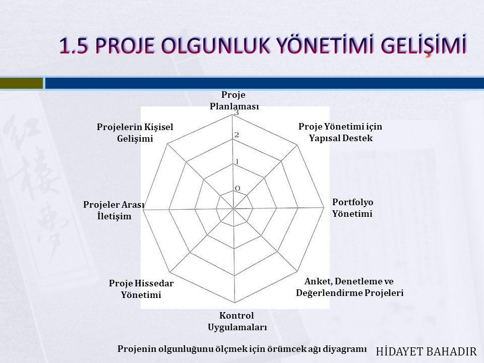 Proje Planlaması Proje Yönetimi için Yapısal Destek Portfolyo Yönetimi Anket, Denetleme ve Değerlendirme Projeleri Kontrol Uygulamaları Proje Hissedar Yönetimi Projeler Arası İletişim Projelerin Kişisel Gelişimi Projenin olgunluğunu ölçmek için örümcek ağı diyagramı HİDAYET BAHADIR