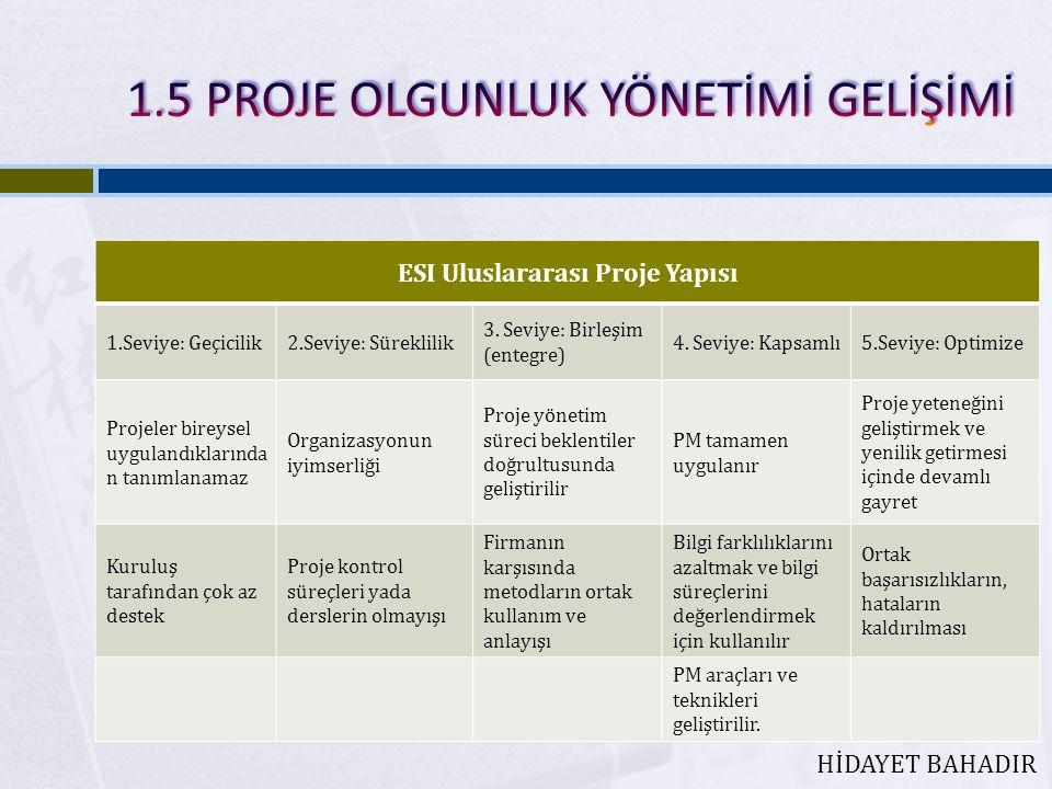 ESI Uluslararası Proje Yapısı 1.Seviye: Geçicilik2.Seviye: Süreklilik 3.