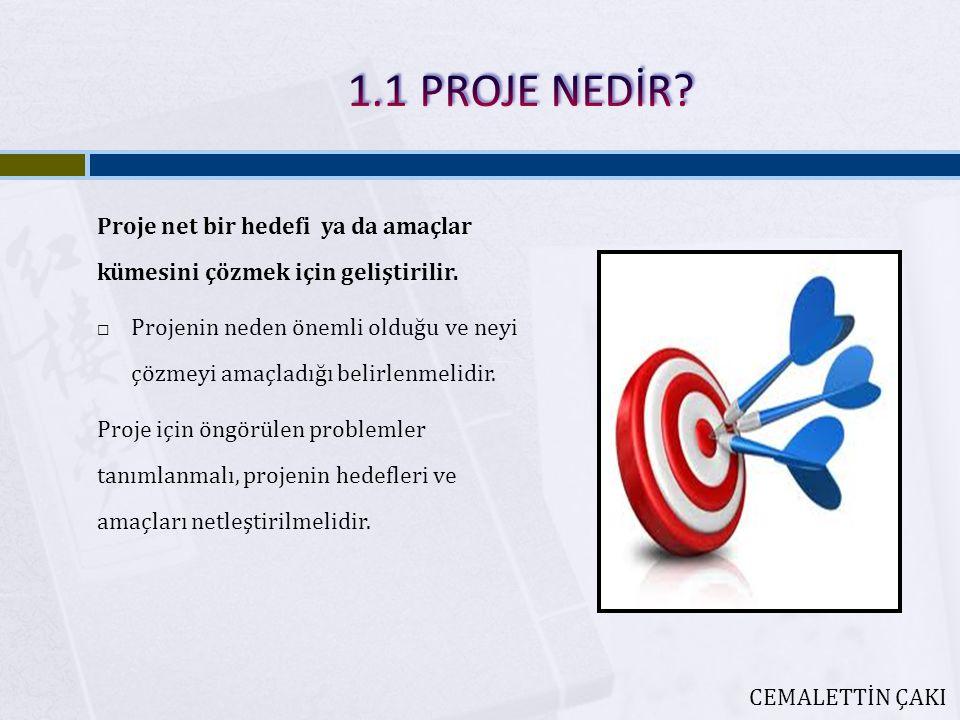 Proje net bir hedefi ya da amaçlar kümesini çözmek için geliştirilir.