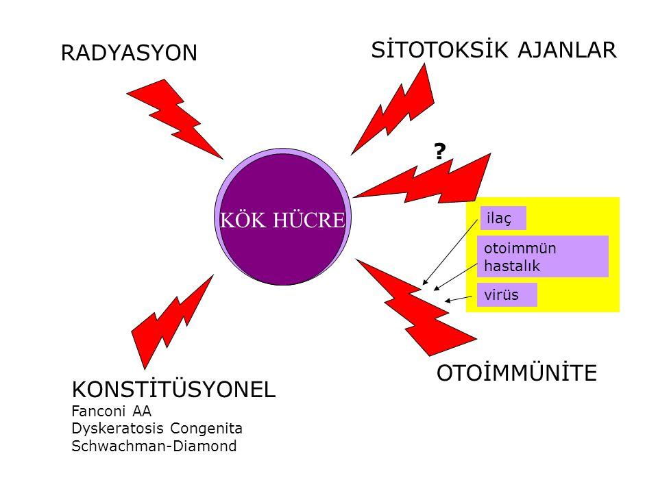 KÖK HÜCRE RADYASYON SİTOTOKSİK AJANLAR KONSTİTÜSYONEL Fanconi AA Dyskeratosis Congenita Schwachman-Diamond OTOİMMÜNİTE otoimmün hastalık ilaç virüs ?