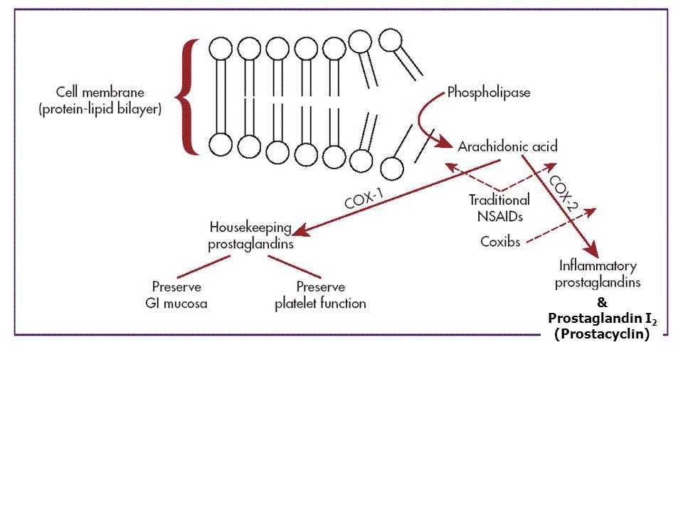 & Prostaglandin I 2 (Prostacyclin)