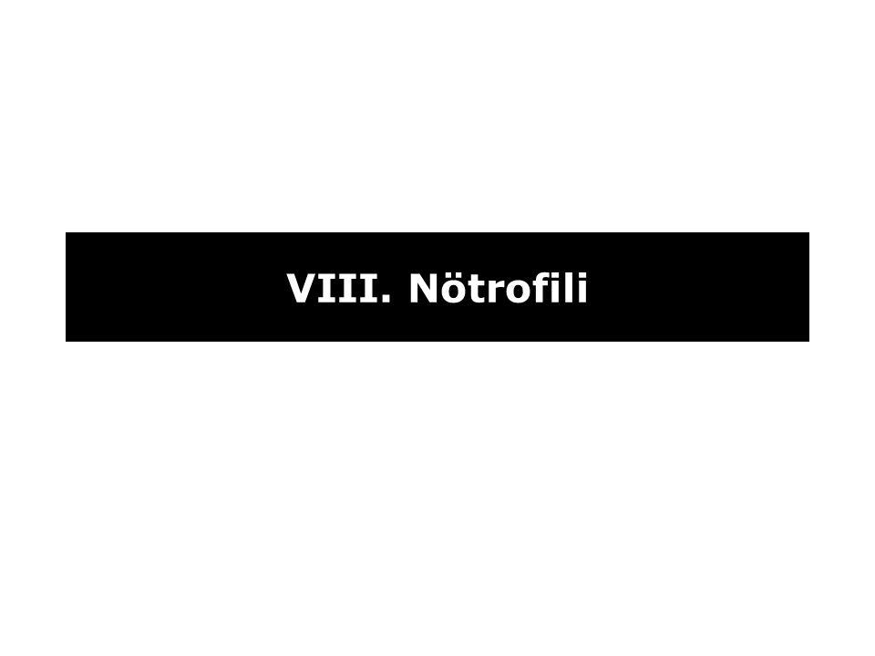 VIII. Nötrofili