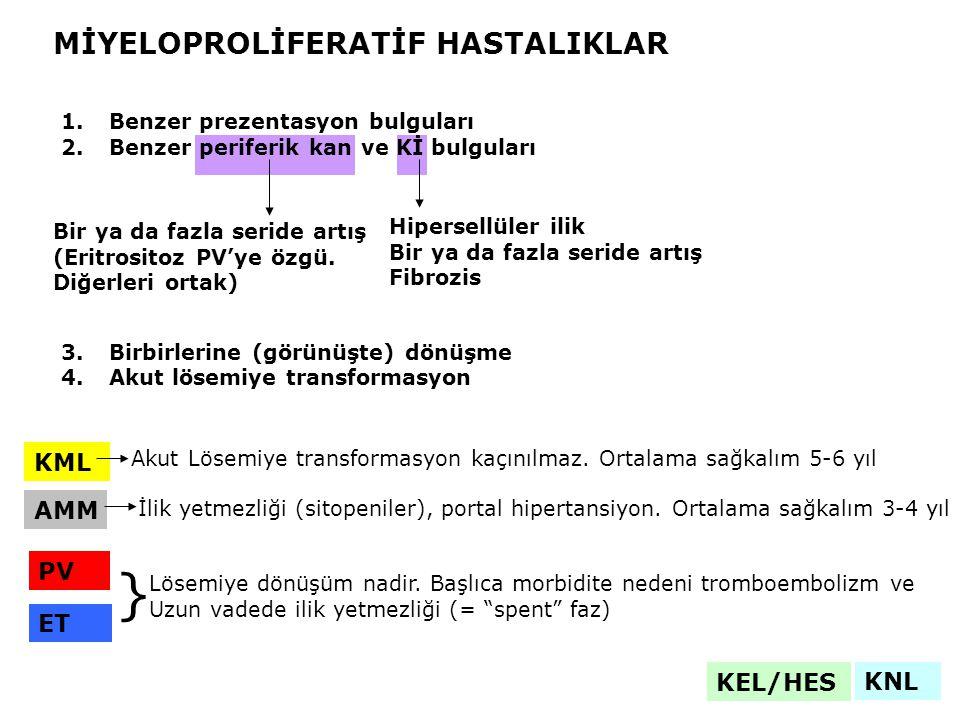 KML AMM PV ET MİYELOPROLİFERATİF HASTALIKLAR 1.Benzer prezentasyon bulguları 2.Benzer periferik kan ve Kİ bulguları 3.Birbirlerine (görünüşte) dönüşme