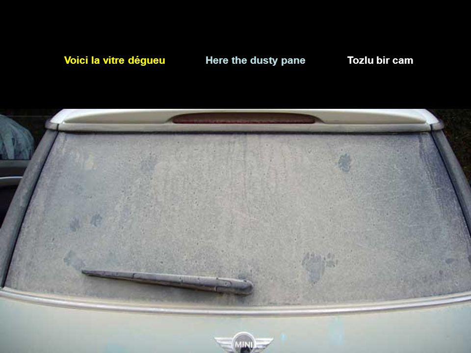 Que fais-tu lorsque tu rencontres une voiture dont le pare-brises est plein de poussière .