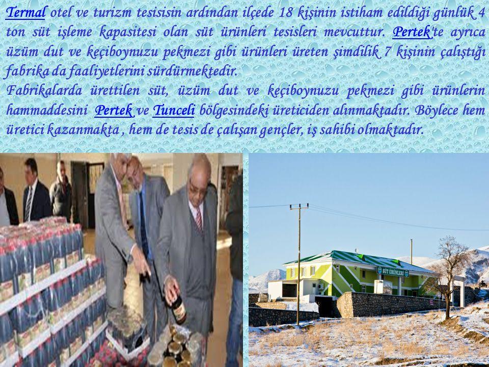 TermalTermal otel ve turizm tesisisin ardından ilçede 18 kişinin istiham edildiği günlük 4 ton süt işleme kapasitesi olan süt ürünleri tesisleri mevcuttur.