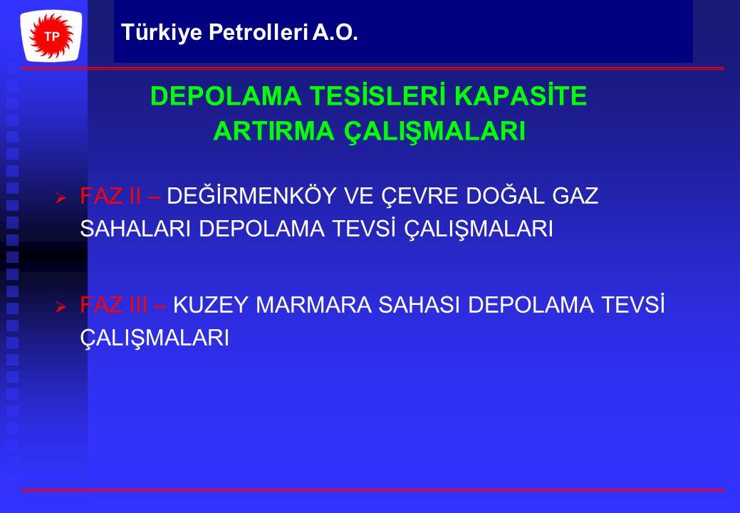 Türkiye Petrolleri A.O. DEPOLAMA TESİSLERİ KAPASİTE ARTIRMA ÇALIŞMALARI   FAZ II – DEĞİRMENKÖY VE ÇEVRE DOĞAL GAZ SAHALARI DEPOLAMA TEVSİ ÇALIŞMALAR
