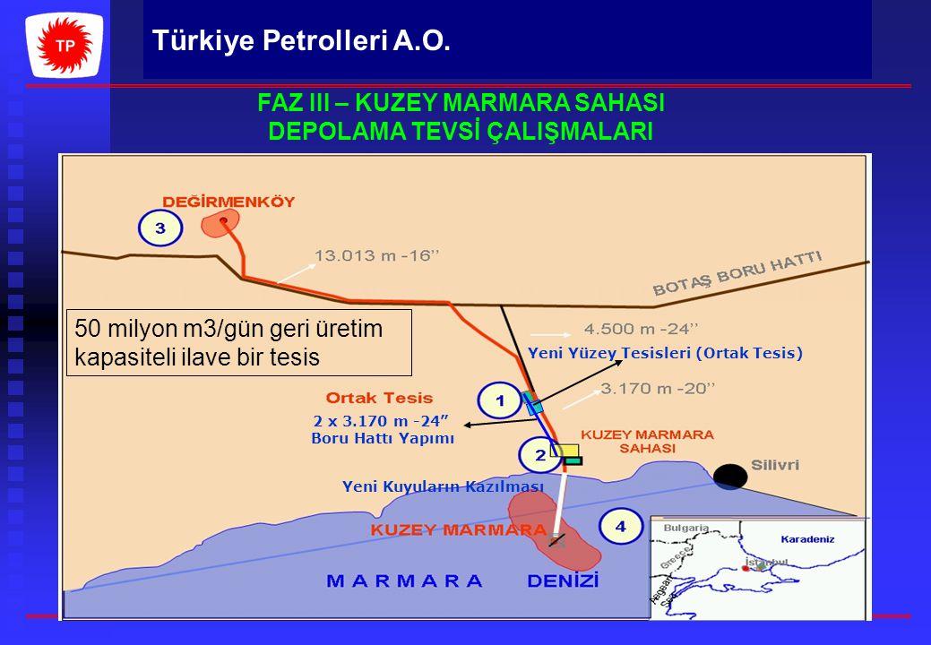 """Türkiye Petrolleri A.O. Yeni Yüzey Tesisleri (Ortak Tesis) 2 x 3.170 m -24"""" Boru Hattı Yapımı Yeni Kuyuların Kazılması FAZ III – KUZEY MARMARA SAHASI"""