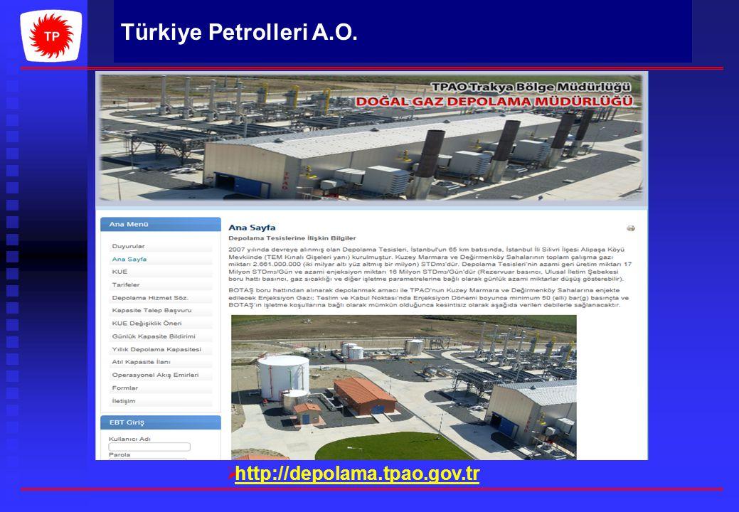 hhttp://depolama.tpao.gov.tr