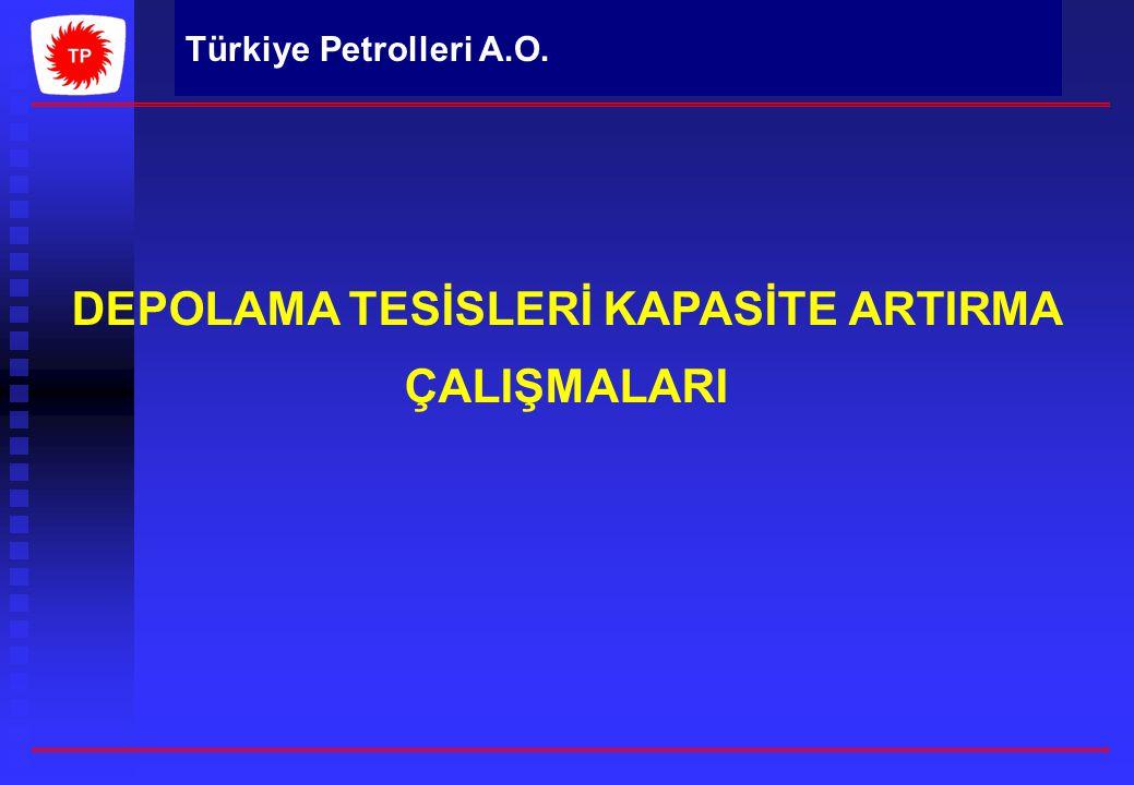Türkiye Petrolleri A.O. DEPOLAMA TESİSLERİ KAPASİTE ARTIRMA ÇALIŞMALARI
