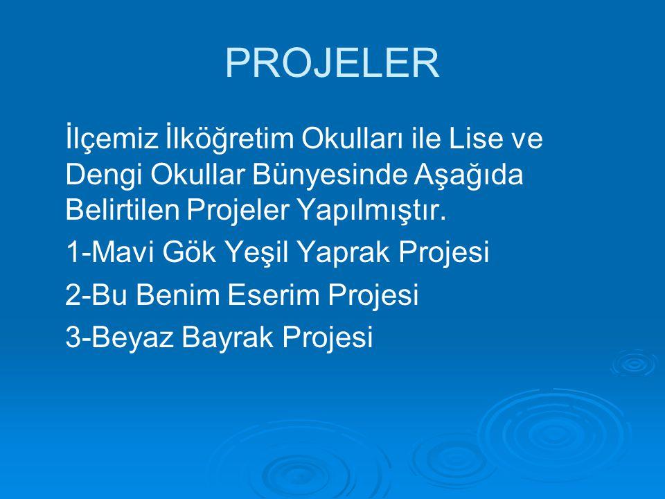PROJELER İlçemiz İlköğretim Okulları ile Lise ve Dengi Okullar Bünyesinde Aşağıda Belirtilen Projeler Yapılmıştır. 1-Mavi Gök Yeşil Yaprak Projesi 2-B