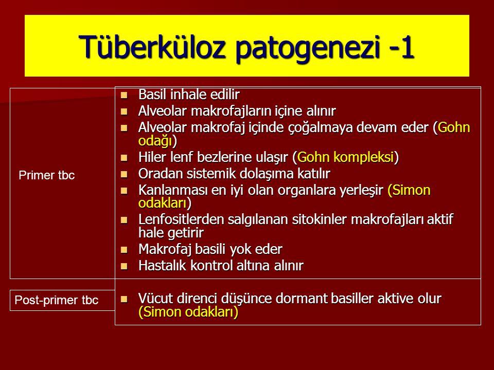 Tüberküloz patogenezi -1 Basil inhale edilir Basil inhale edilir Alveolar makrofajların içine alınır Alveolar makrofajların içine alınır Alveolar makr