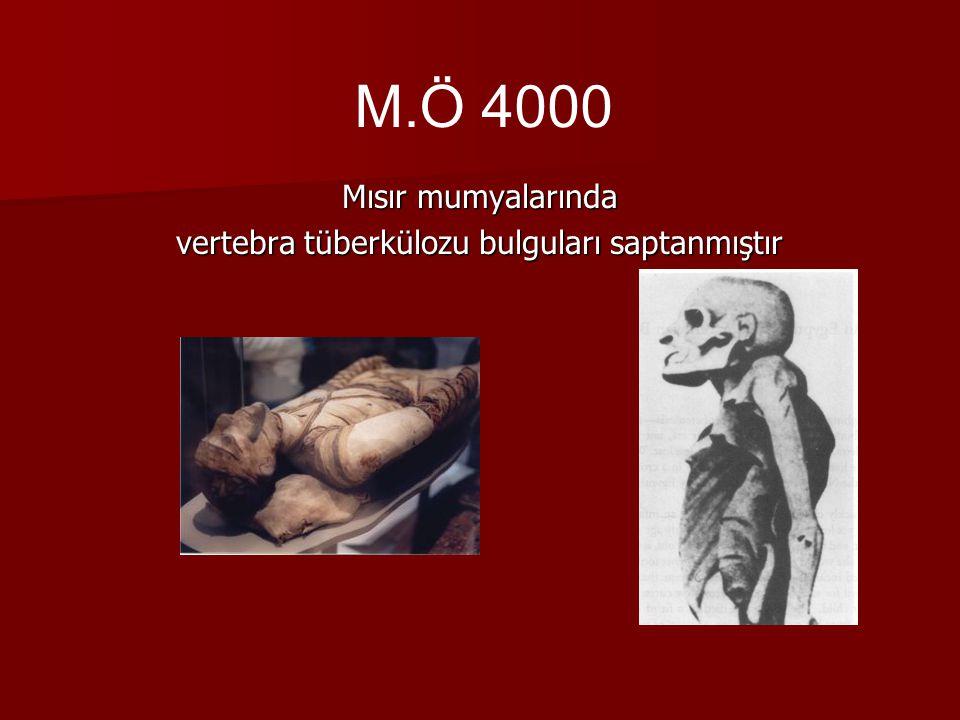 Mısır mumyalarında vertebra tüberkülozu bulguları saptanmıştır M.Ö 4000