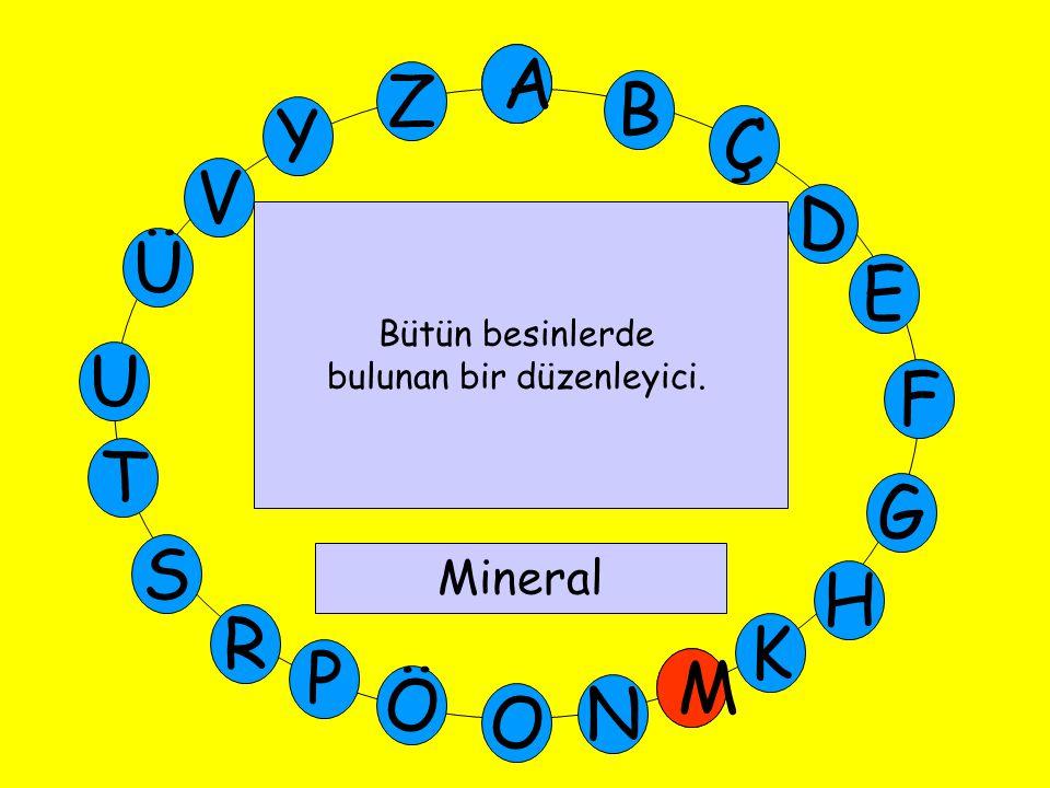 A M Ü V Y Z E D Ç B A U T G F S P Ö O H K N R M Bütün besinlerde bulunan bir düzenleyici. Mineral