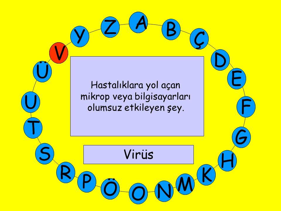 A M Ü V Y Z E D Ç B A U T G F S P Ö O H K N R Hastalıklara yol açan mikrop veya bilgisayarları olumsuz etkileyen şey.