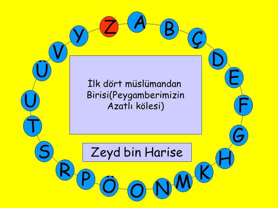 A M Ü V Y Z E D Ç B A U T G F S P Ö O H K N R İlk dört müslümandan Birisi(Peygamberimizin Azatlı kölesi) Zeyd bin Harise Z