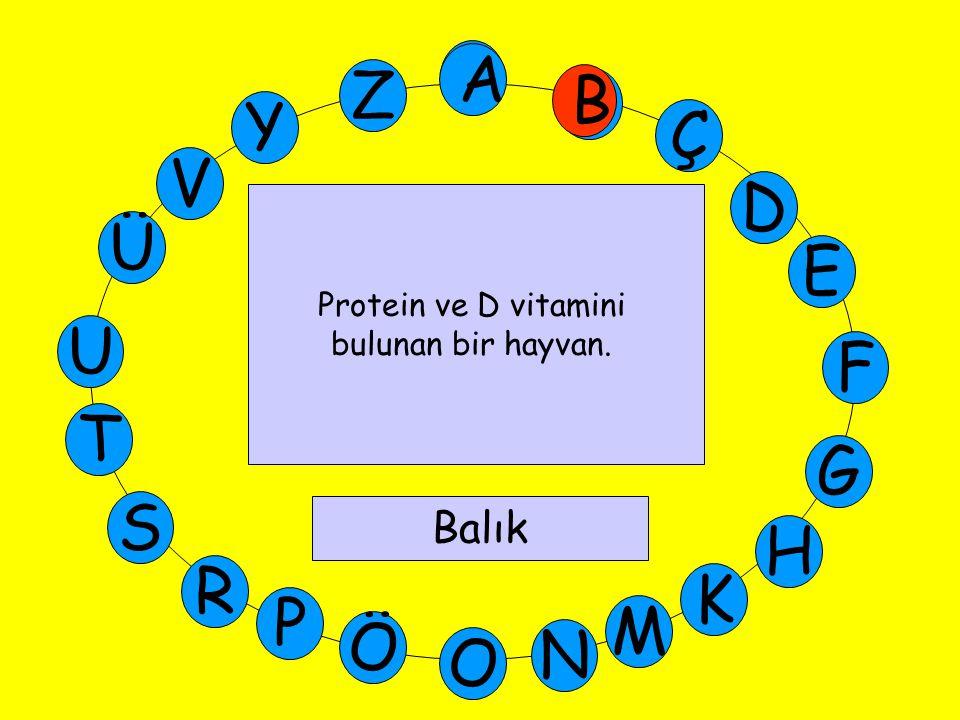 A M Ü V Y Z E D Ç B A U T G F S P Ö O H K N R B Protein ve D vitamini bulunan bir hayvan. Balık