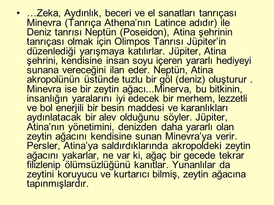 …Zeka, Aydınlık, beceri ve el sanatları tanrıçası Minevra (Tanrıça Athena'nın Latince adıdır) ile Deniz tanrısı Neptün (Poseidon), Atina şehrinin tanr