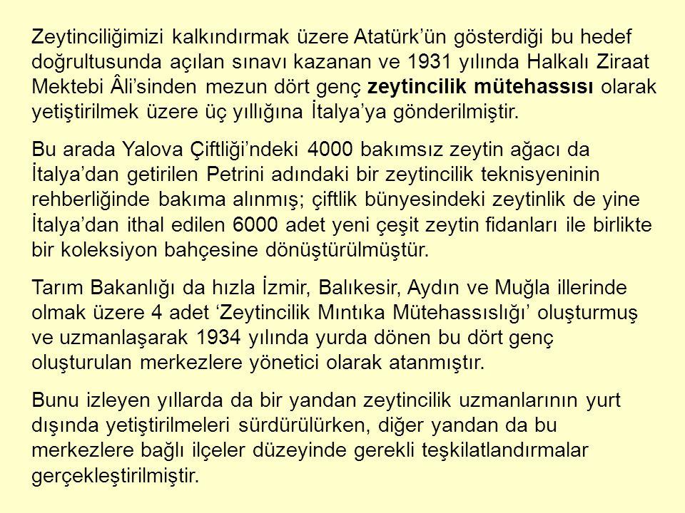 Zeytinciliğimizi kalkındırmak üzere Atatürk'ün gösterdiği bu hedef doğrultusunda açılan sınavı kazanan ve 1931 yılında Halkalı Ziraat Mektebi Âli'sind