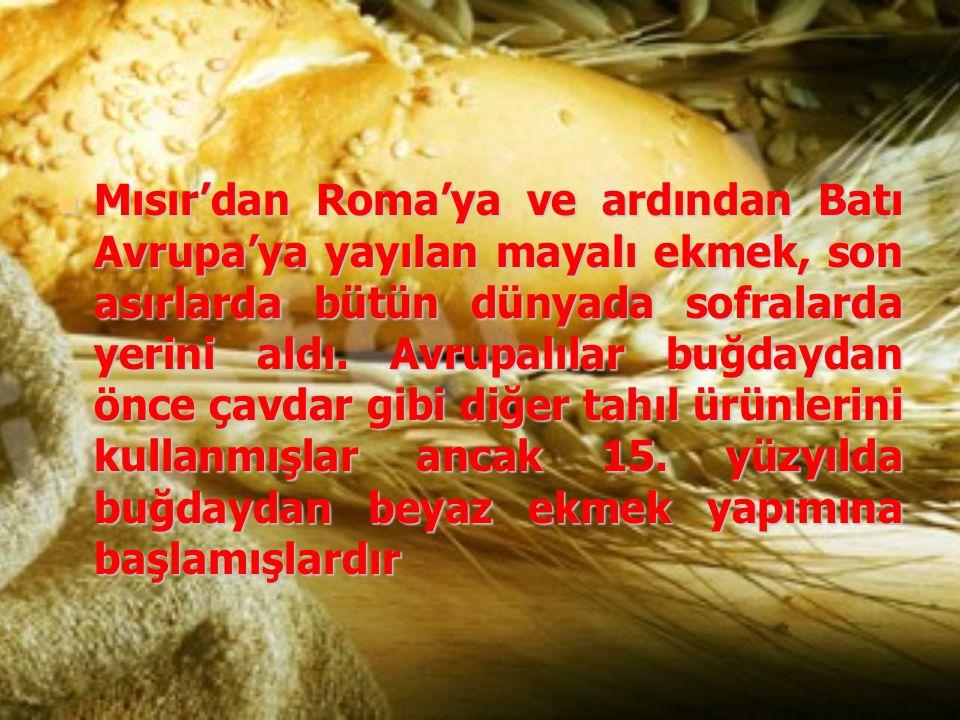 Mısır'dan Roma'ya ve ardından Batı Avrupa'ya yayılan mayalı ekmek, son asırlarda bütün dünyada sofralarda yerini aldı. Avrupalılar buğdaydan önce çavd