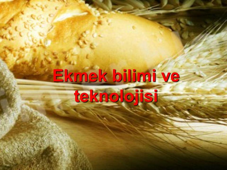 Ekmek bilimi ve teknolojisi