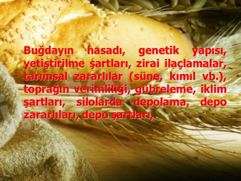 Buğdayın hasadı, genetik yapısı, yetiştirilme şartları, zirai ilaçlamalar, tarımsal zararlılar (süne, kımıl vb.), toprağın verimliliği, gübreleme, ikl