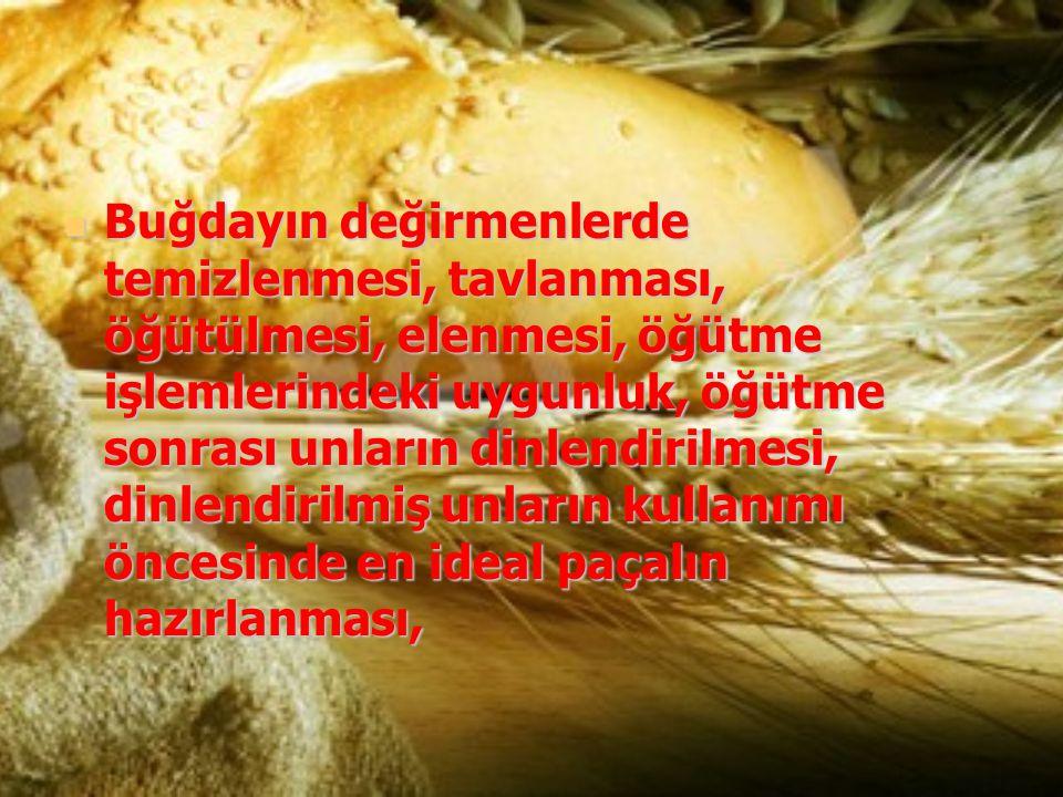 Buğdayın değirmenlerde temizlenmesi, tavlanması, öğütülmesi, elenmesi, öğütme işlemlerindeki uygunluk, öğütme sonrası unların dinlendirilmesi, dinlend
