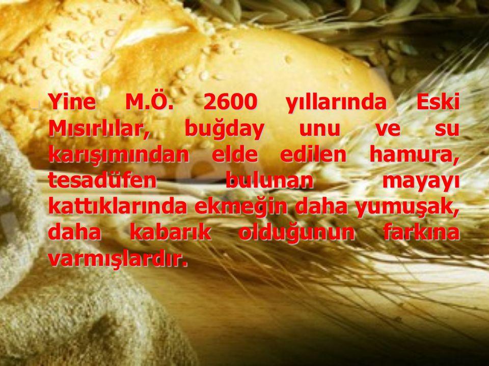 Yine M.Ö. 2600 yıllarında Eski Mısırlılar, buğday unu ve su karışımından elde edilen hamura, tesadüfen bulunan mayayı kattıklarında ekmeğin daha yumuş