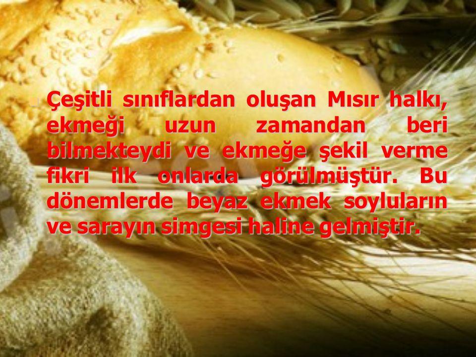 Çeşitli sınıflardan oluşan Mısır halkı, ekmeği uzun zamandan beri bilmekteydi ve ekmeğe şekil verme fikri ilk onlarda görülmüştür. Bu dönemlerde beyaz