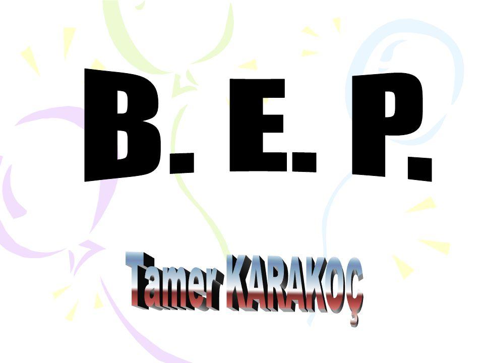 Ülkemizde 1997 yılında yürürlüğe giren 573 sayılı K.H.K nin de, bireylerin arasında fark gözetmeyen bir değerlendirme ve tüm yetersizliği olan bireyler için B.E.P.