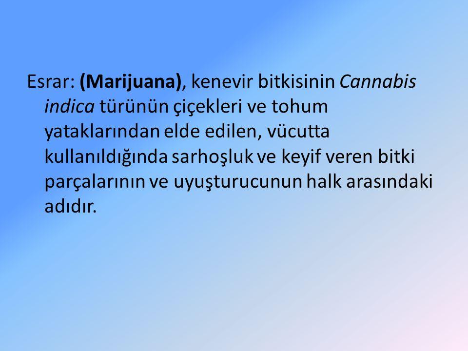 Esrar: (Marijuana), kenevir bitkisinin Cannabis indica türünün çiçekleri ve tohum yataklarından elde edilen, vücutta kullanıldığında sarhoşluk ve keyi
