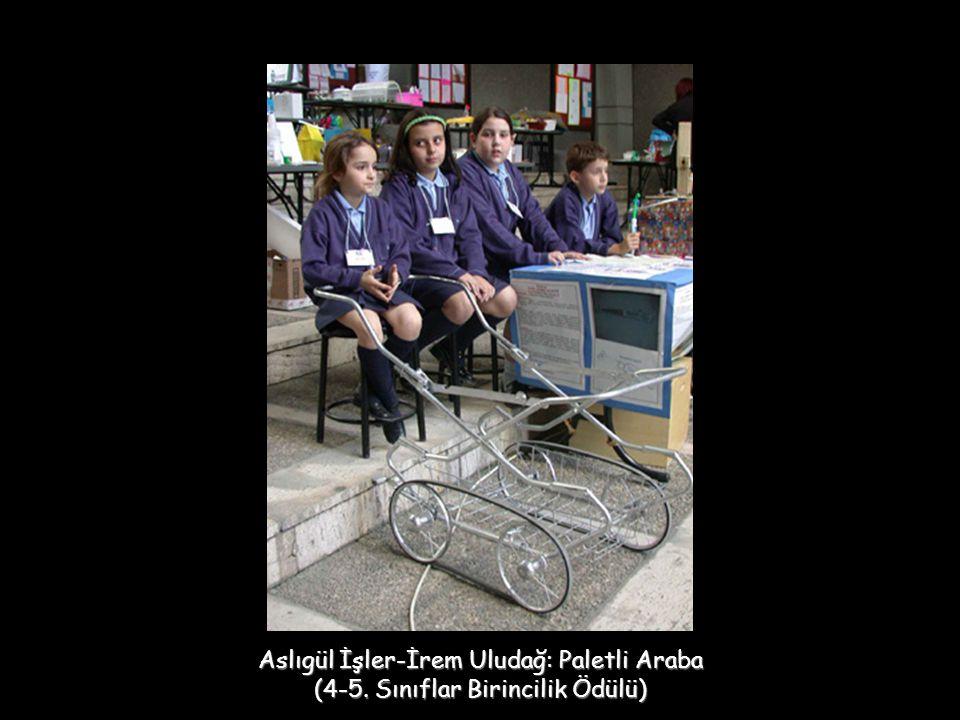 Aslıgül İşler-İrem Uludağ: Paletli Araba (4-5. Sınıflar Birincilik Ödülü)