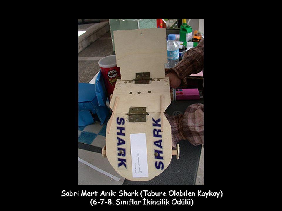Sabri Mert Arık: Shark (Tabure Olabilen Kaykay) (6-7-8. Sınıflar İkincilik Ödülü)