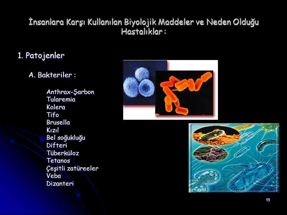 19 İnsanlara Karşı Kullanılan Biyolojik Maddeler ve Neden Olduğu Hastalıklar : 1. Patojenler A. Bakteriler : Anthrax-ŞarbonTularemiaKoleraTifoBrusella