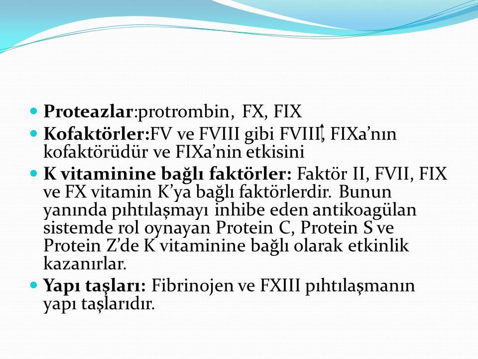 Proteazlar:protrombin, FX, FIX Kofaktörler:FV ve FVIII gibi FVIII, FIXa'nın kofaktörüdür ve FIXa'nin etkisini K vitaminine bağlı faktörler: Faktör II,
