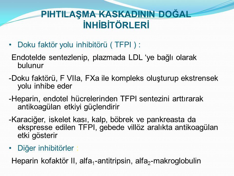 PIHTILAŞMA KASKADININ DOĞAL İNHİBİTÖRLERİ Doku faktör yolu inhibitörü ( TFPI ) : -Endotelde sentezlenip, plazmada LDL 'ye bağlı olarak bulunur -Doku f