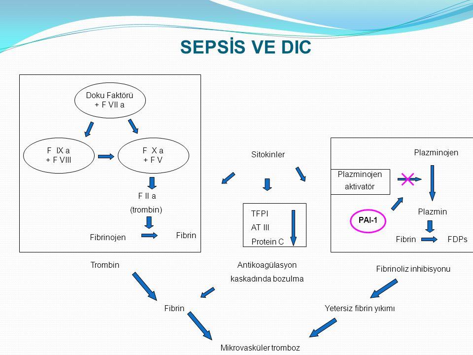 Doku Faktörü + F VII a F IX a + F VIII F X a + F V F II a (trombin) Fibrinojen Fibrin Sitokinler TFPI AT III Protein C Plazminojen aktivatör PAI-1 Pla