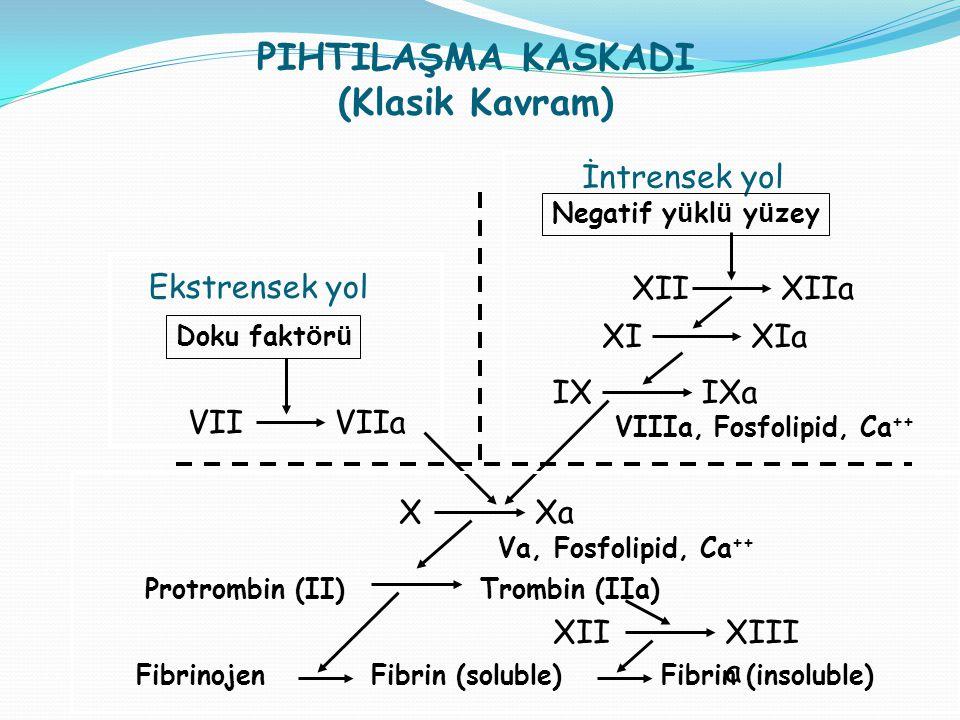 PIHTILAŞMA KASKADI (Klasik Kavram) Ekstrensek yol Doku fakt ö r ü VIIVIIa İntrensek yol Negatif y ü kl ü y ü zey XIIXIIa XIXIa IXIXa VIIIa, Fosfolipid